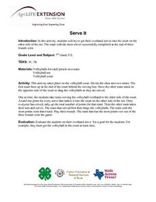 Serve It! Lesson Plan