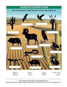 Shadow Know-How: Desert Plants and animals Worksheet