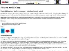 Sharks and Fishes Lesson Plan