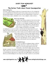 Short Film Worksheet: The Rotten Truth About Forest Decomposition Worksheet