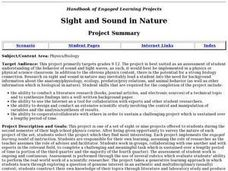 Sight and Sound in Nature Lesson Plan