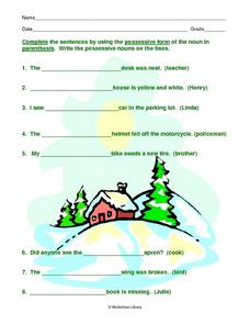 Single Possessives Worksheet with Snow Graphic Worksheet
