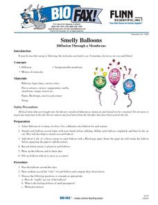 Smelly Balloons Lesson Plan