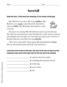 Snowball Worksheet