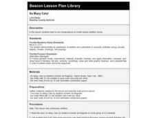 So Many Cats! Lesson Plan