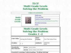 Solving the Problem Lesson Plan
