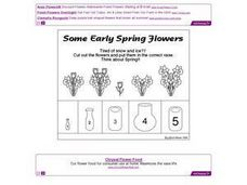 Some Early Spring Flowers Worksheet