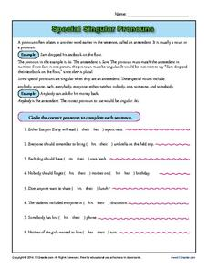 Special Singular Pronouns 6th - 8th Grade Worksheet | Lesson Planet