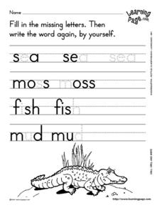 Spell and Write 6 Worksheet