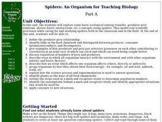 Spiders: An Organism for Teaching Biology Lesson Plan
