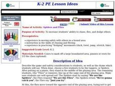 Spiders and Flies Lesson Plan