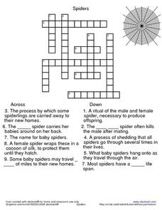 Spiders Crossword Puzzle Lesson Plan