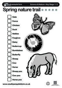 Spring Nature Trail... Worksheet