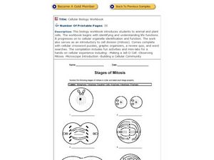 biologix cell cycle mitosis and cytoplasmic division worksheet answers cell cycle diagram with. Black Bedroom Furniture Sets. Home Design Ideas