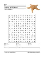 Starfish Word Search Worksheet