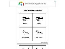 State Bird Concentration Worksheet