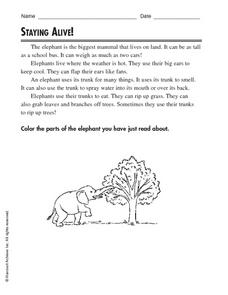 Staying Alive Worksheet