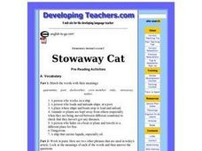 Stowaway Cat Lesson Plan