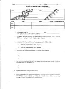Structure of DNA and RNA Worksheet