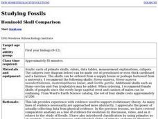 Studying Fossils: Hominoid Skull Comparison Lesson Plan