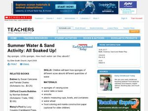 Summer Water & Sand Activity: All Soaked Up! Lesson Plan