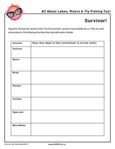 Survivor Worksheet