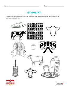 Symmetry in Agriculture Worksheet
