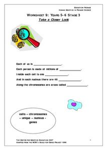 Take a Closer Look Worksheet