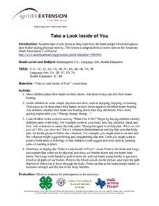 Take a Look Inside of You Lesson Plan