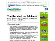 Teaching about the Rainforest - Classroom Ideas Lesson Plan