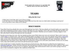 Tears Lesson Plan