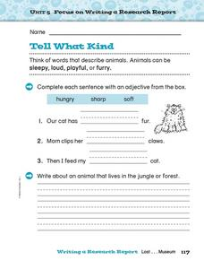 Tell What Kind Worksheet