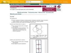 Tessellations:  Use Angles To Show That Shapes Will or WIll Not Tessellate Lesson Plan