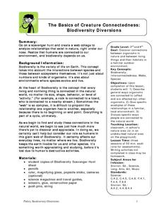 The Basics of Creature Connectedness:  Biodiversity Diversions Lesson Plan