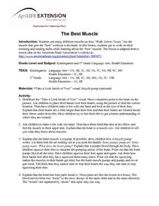 The Best Muscle Lesson Plan