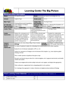 The Big Picture Lesson Plan
