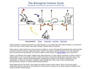 the biological carbon cycle 4th 6th grade lesson plan lesson planet. Black Bedroom Furniture Sets. Home Design Ideas