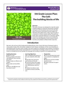 powerpoint anime lesson plans worksheets reviewed by teachers. Black Bedroom Furniture Sets. Home Design Ideas