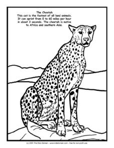 The Cheetah Information and Coloring Page Worksheet