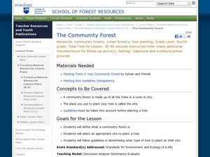 The Community Forest Lesson Plan