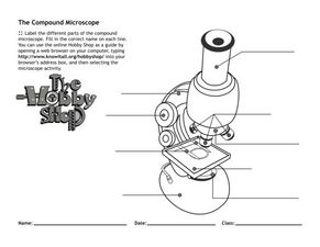 Worksheets The Compound Microscope Worksheet the compound microscope 4th 7th grade worksheet lesson planet worksheet