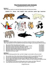 The Environment and Animals Worksheet