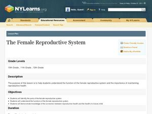 The Female Reproductive System Lesson Plan