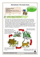 The Food Chain Lesson Plan