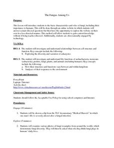 The Fungus Among Us Lesson Plan