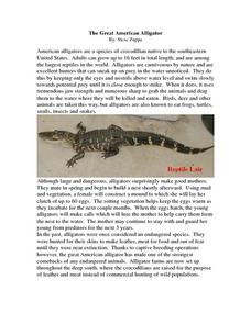 The Great American Alligator Worksheet