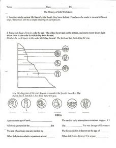 The History of Life Worksheet Worksheet