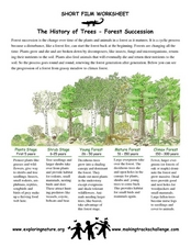 The History of Trees-Forest Succession Worksheet