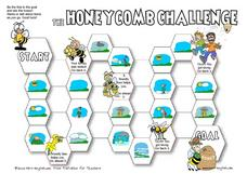 The Honeycomb Challenge: Weather Worksheet