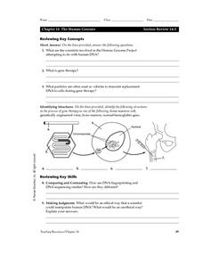 The Human Genome Worksheet
